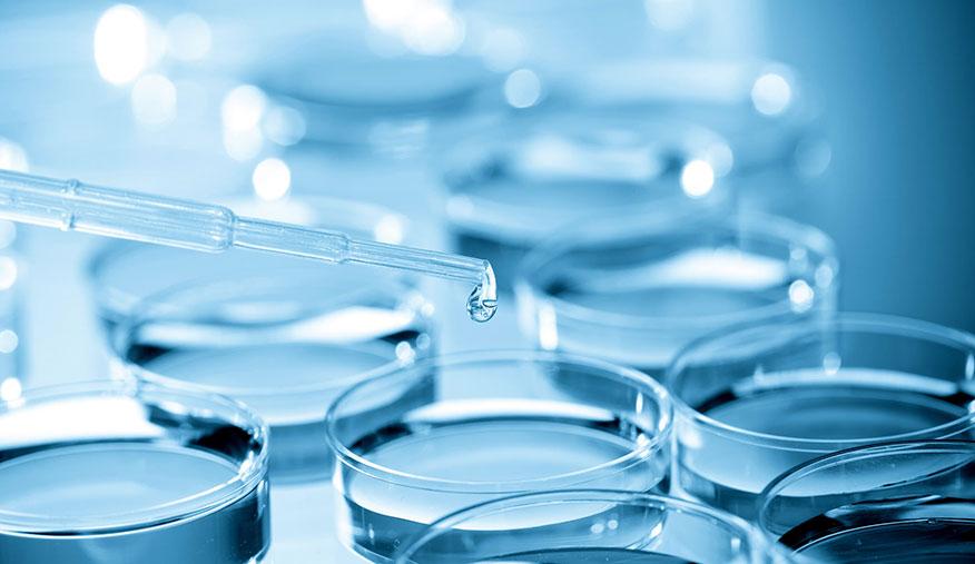 ¿En qué momento se hace la inseminación artificial?