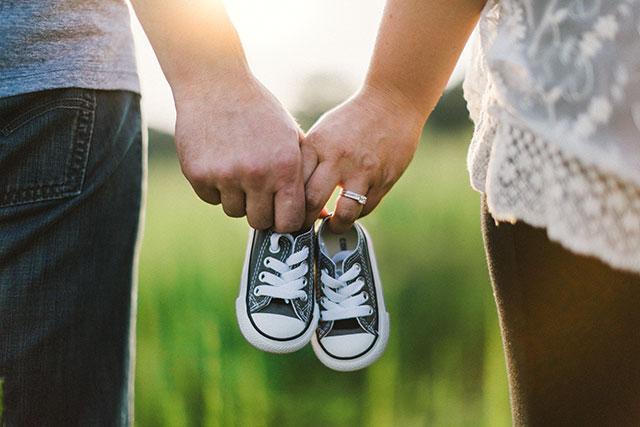 transferencia-de-embriones