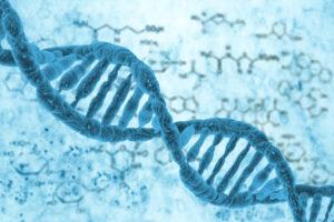 selección genética embriones